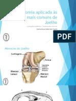 Anatomia Aplicada Às Lesões Mais Comuns de Joelho