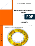 Business Information Systems - Analysis