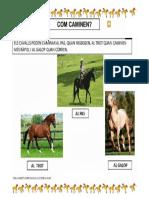 7b  com caminen els caballs fitxa.pdf