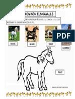 12. Com Són Els Cavalls Fitxa