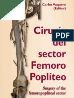 Cirugia-del-sector-femoro-popliteo.pdf