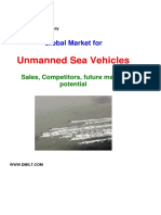 Global Market_USV_2010.pdf