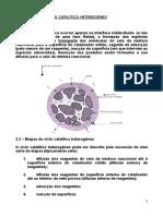 Capt 3 - Análise Do Ciclo Catalítico Heterogéneo