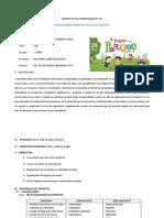 PROYECTO DE APRENDIZAJE N°01-2017.docx