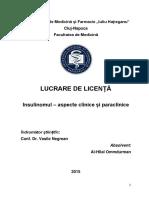 Licenta Insulinom - Model