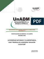 Reporte Final UNADM