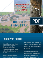 rubber situationer sibugay.pdf