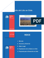 mac-lean-cochilcodesarrollodellitioenchile-110926140601-phpapp02.pdf