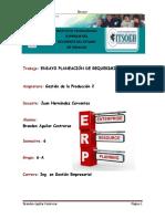 309643544-Ensayo-ERP.docx