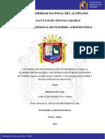 Huayna Chara Carlos David