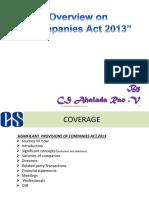 companiesact2013-170623062959 (1)