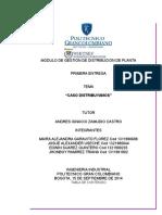 306874015 Segunda Entrega Distribucion de Plantas
