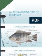 Habitos Alimenticios de Los Peces by Elomrtz