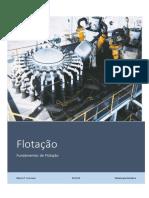 Fundamentos_sobre_Flotacao.pdf