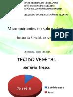 Fertilidade Do Solo - Micronutrientes