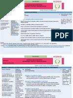 Contenidos-objetivos-estrategias Epist y E.esp...