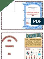 ALBUM DENGUE.docx
