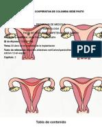El útero en el momento de la implantación.docx