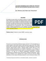 Modelo Semifisico de Base Fenomenológica Borojó