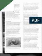 Natural+Resource+4.pdf