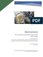 Biorreactores artesanales