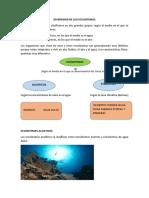 Diversidad de Los Ecosistemas