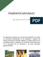 1 - PIGMENTOS NATURALES