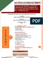 Diapositivas Mari Cotrina