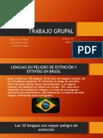 Lenguas en Peligro de Extincion
