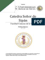 Catedra Señor de Sipán Investigacion