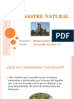 Desastre natural.pptx