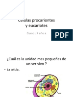 las células ppt básico