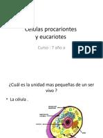 ESTEFANIA Y ISADORA.pptx