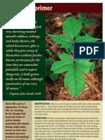 Poison Ivy primer