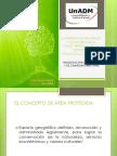 S8 Lilia Varela PowerPoint.ppt