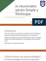 PerceptronSimple-Presentacion