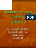 Deficit Cognitivo Esquizofrenia 2008 Gricel Orellana