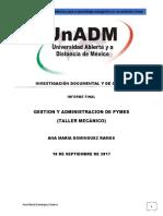 Ana Maria Dominguez Informe
