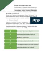 Documento 1 SQF
