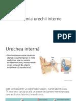 6.Anatomia Urechii Interne