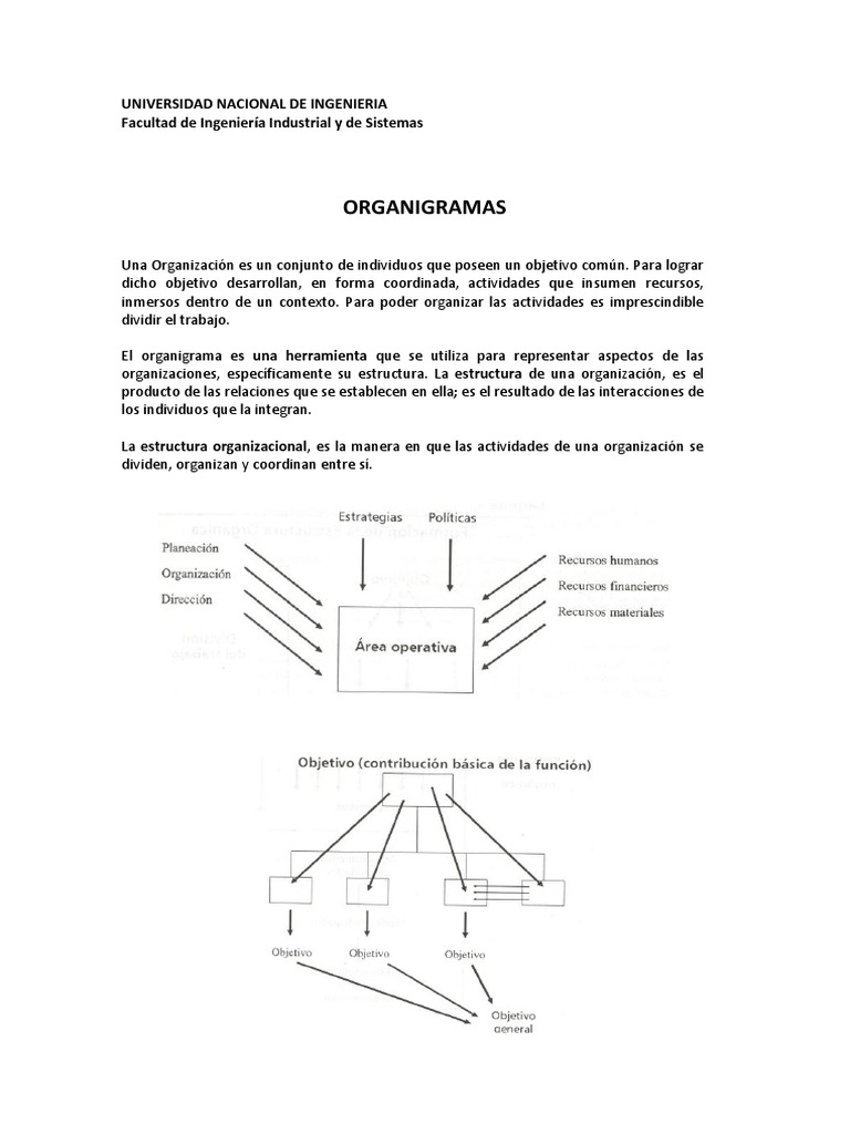 Organigramas 1