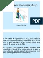 1196187729_rega_subterranea