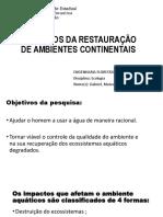 Principios Da Restauração de Ambientes Continentais