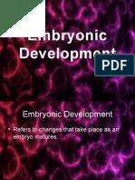 Embryonic Development.pptx