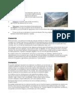 Agricultura-INCA.docx