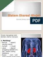 Sistem Eksresi Ginjal(fister 3).pptx