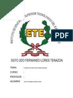 TEMA.docx