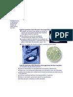 58709075-Recuento-microorganismos-aerobios-mesofilos.docx