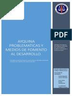 Informe Comunidad de Ayquina