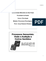 Aula 3 - Processos Sensoriais - Visão e Audição - 11.02.2014